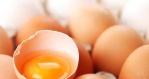 01-huevo